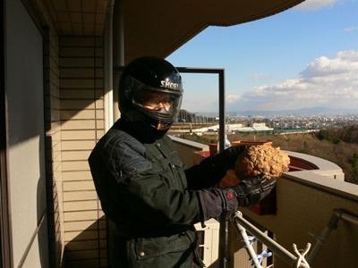 スズメバチ防護服